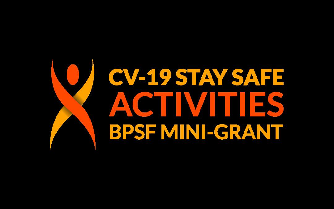 CV-19 Stay Safe Activities Mini-Grant