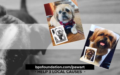 Show off your Pet and help 3 local causes!